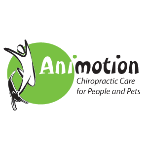 Animotion Chiropractic Care